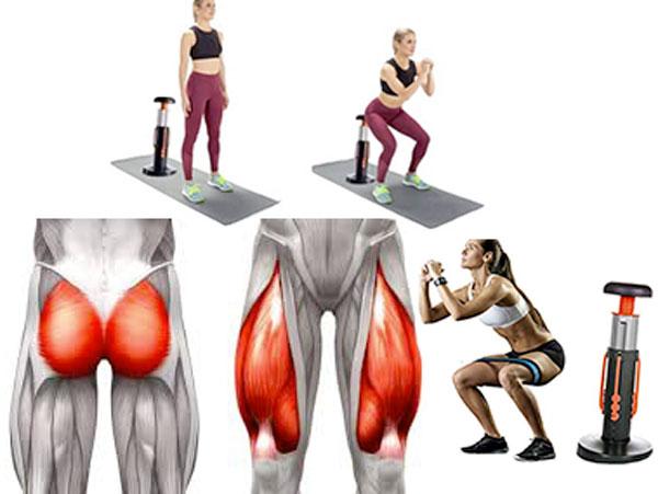 gymform squat muscoli