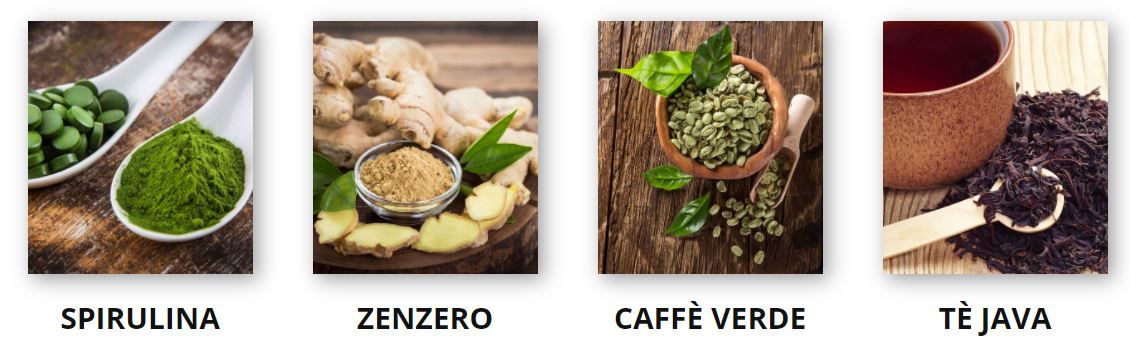 ingredienti new you integratore